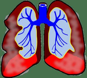 Durch das Inhalationsgerät gelangt der Wirkstoff bis tief in die Lunge